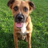 Abagail from Tishomingo | Woman | 36 years old | Gemini