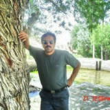 Ahmad from Tebbetts   Man   49 years old   Aries